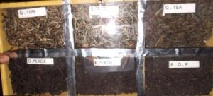Чай фабрика 2.2