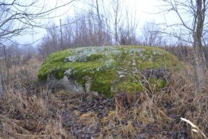 Рис.13.1 Камень Медведица близ Новгорода