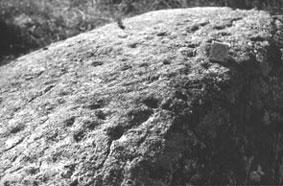 Рис.15.1 Чертов камень 33 лунки д. Велец Белоруссия