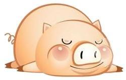 Pig-Sleep