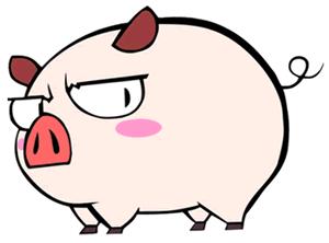 staring-pig300